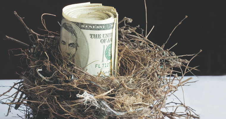 Money in a nest